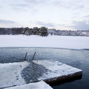 STF Stockholm/Hellasgården Vandrarhem