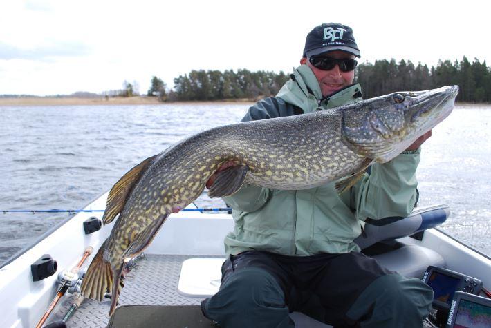 Sportfiske i Dalsland med boende på Edsleskogs Wärdshus
