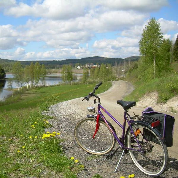 Bike trail - the High Coast