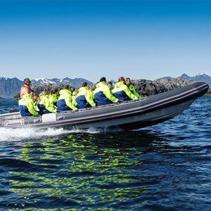 © Remi Eilertsen, Skjærgårdscruise i Henningsvær med Rib båt