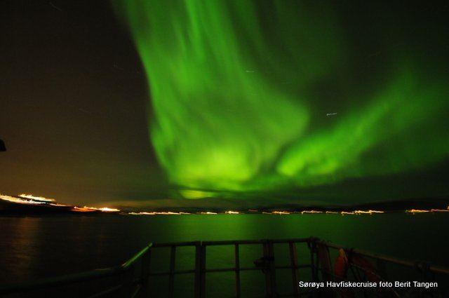 Nordlyscruise ved midnatt – Sørøya Havfiskecruise