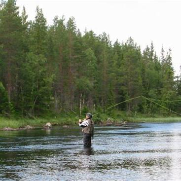 Sälens Fiskespecialist, Sälen