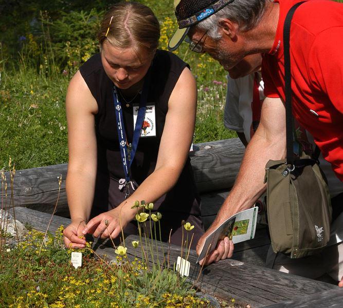 Alpine Botanical Garden and Vindelfjällen Nature Reserve visitor center