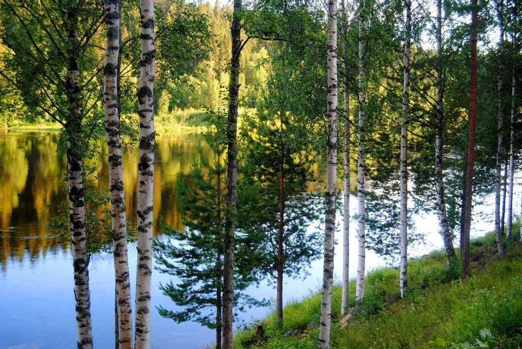 Strandpromenaden/Ume Älvdal river valley