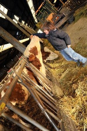 Visite et goûter à la ferme