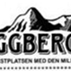 Boggberget