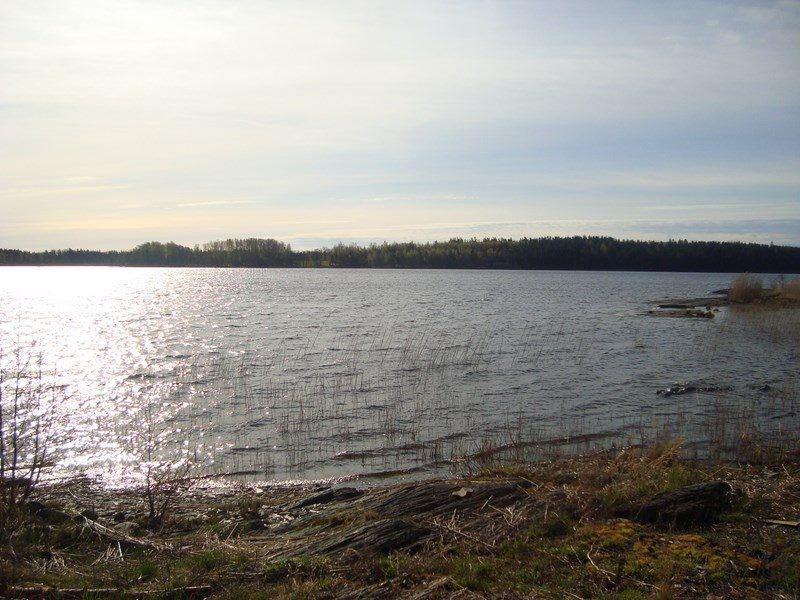 Svanfjorden (Nedre Upperudsälvens Fischpfelgegebiet)
