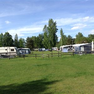 Malexanders Camping / Camping