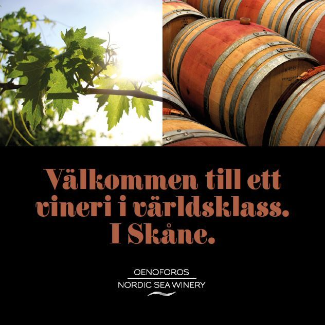 Guided tours of Scandinavia's largest Winery - the journey from grapes to wine!