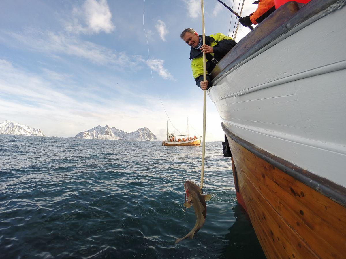 Lofotfiske for fiskeentusiaster
