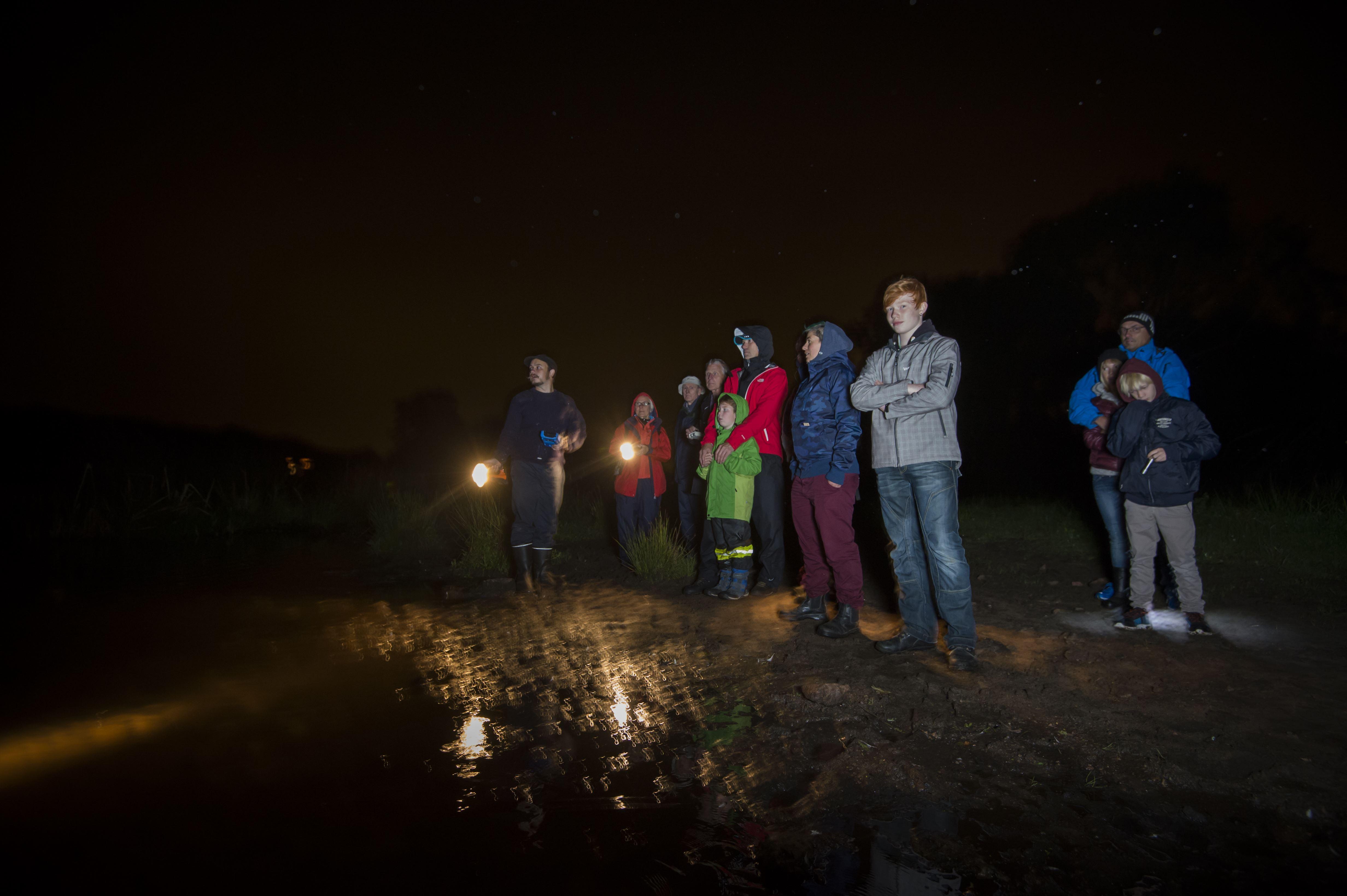 Nattens sångare i Vattenriket!