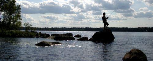 Fiske i Ärnanäsasjöns FVO