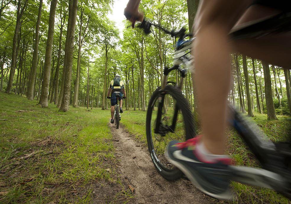 Mountainbike-uthyrning