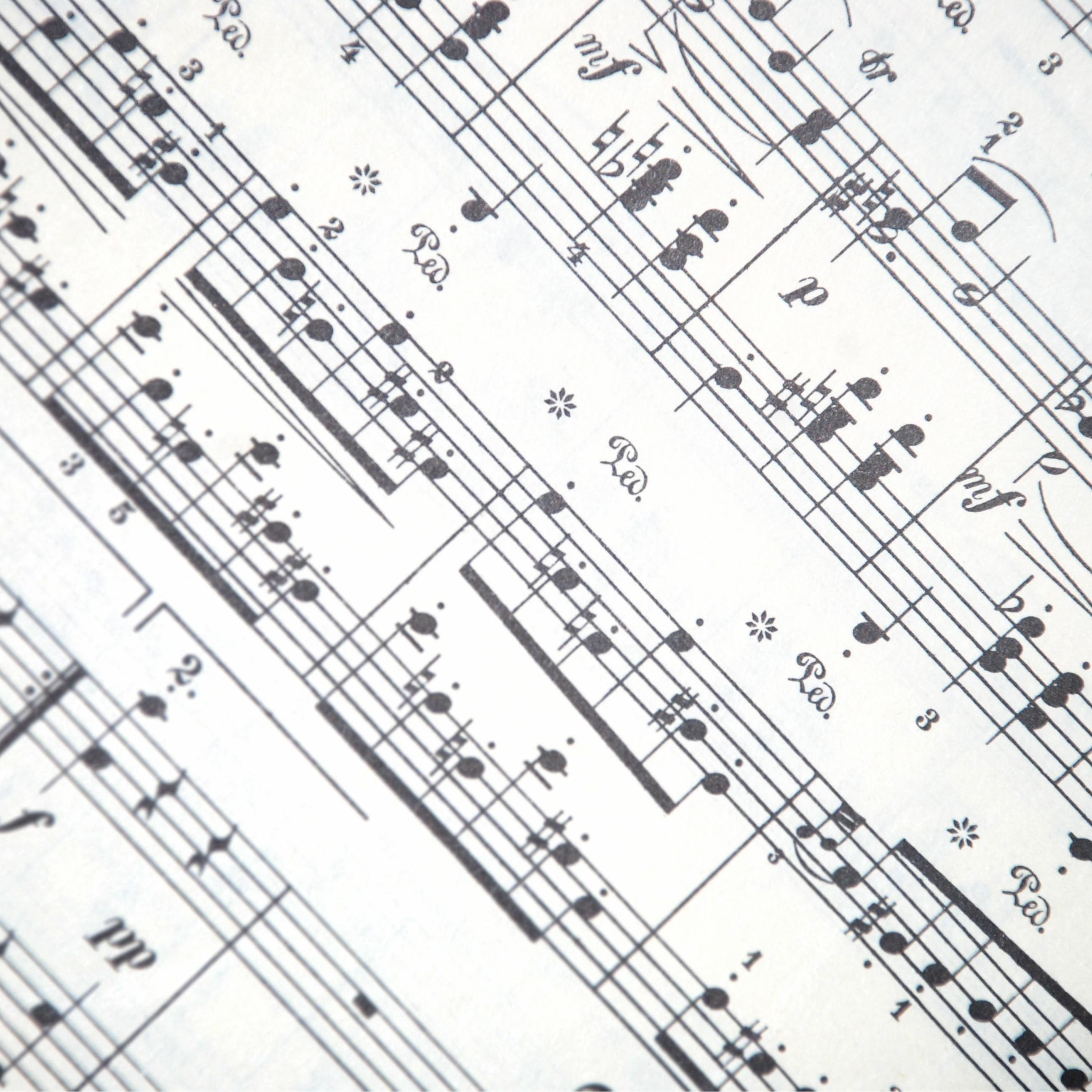 Musik: David Rowland och Natacha Kudritskaya