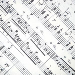 Musik: Trio Stravaganti
