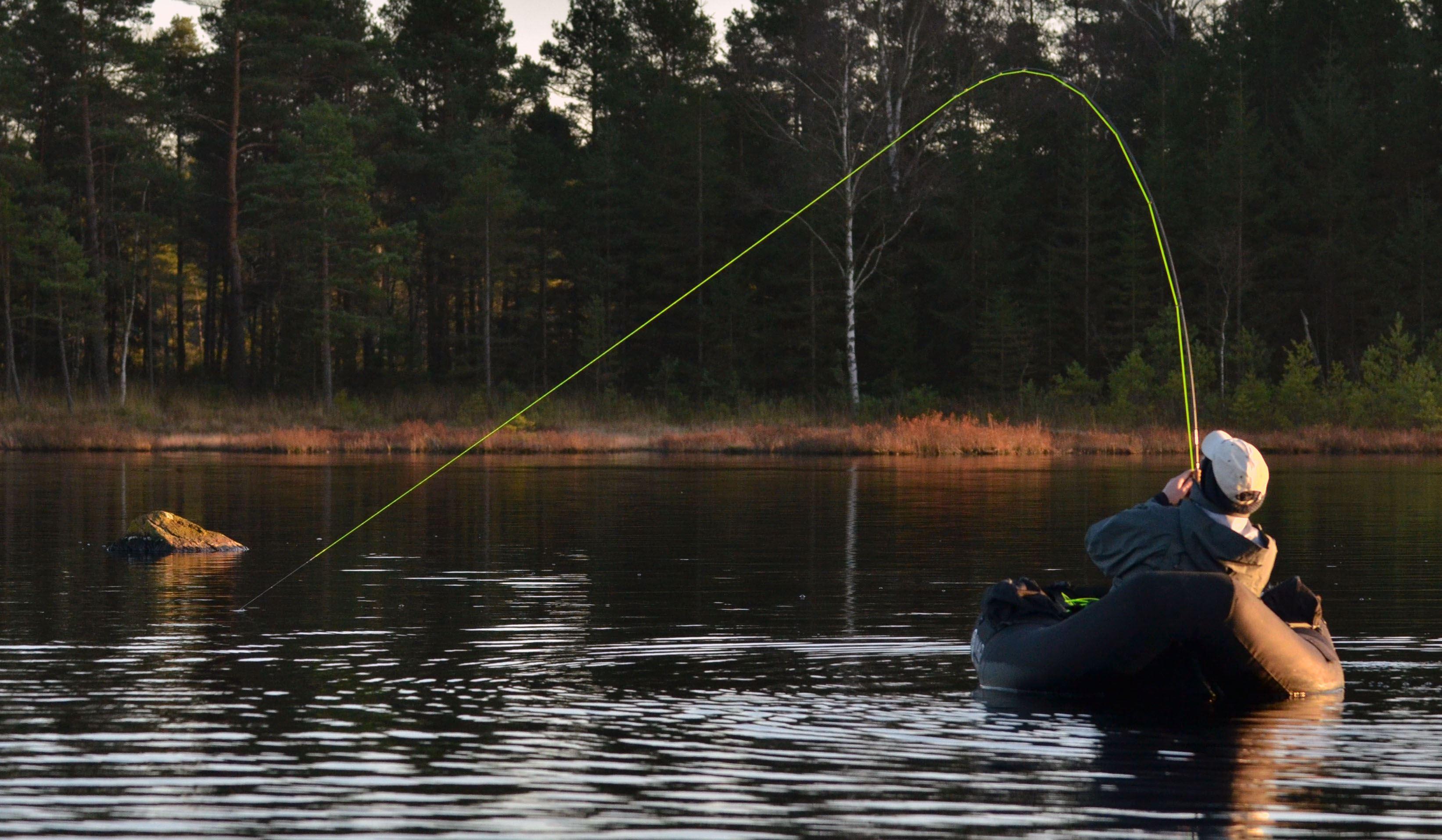 Gäddfiske i Hjortseryd
