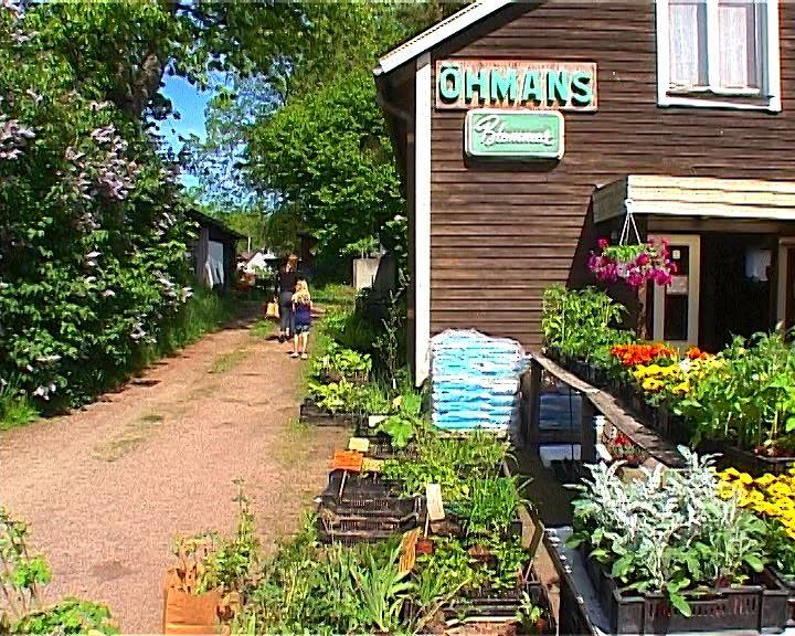 Film: Öhmans handelsträdgård