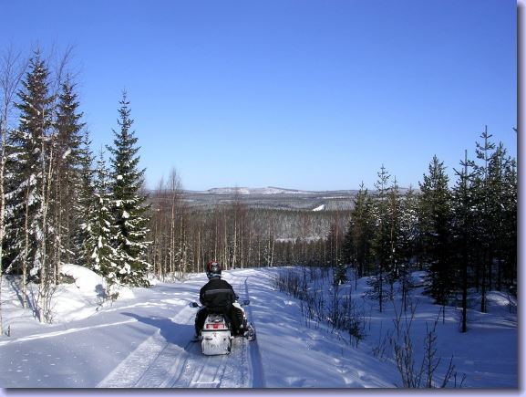Snowmobile trails in Bjurholm