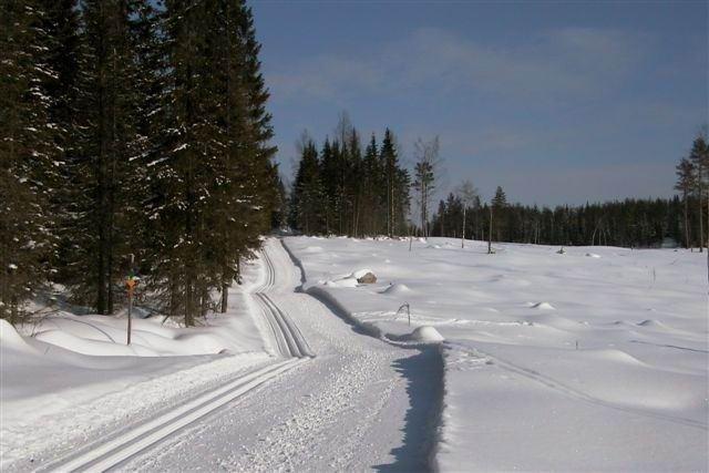 Skidspår i Orfa, Vallsta