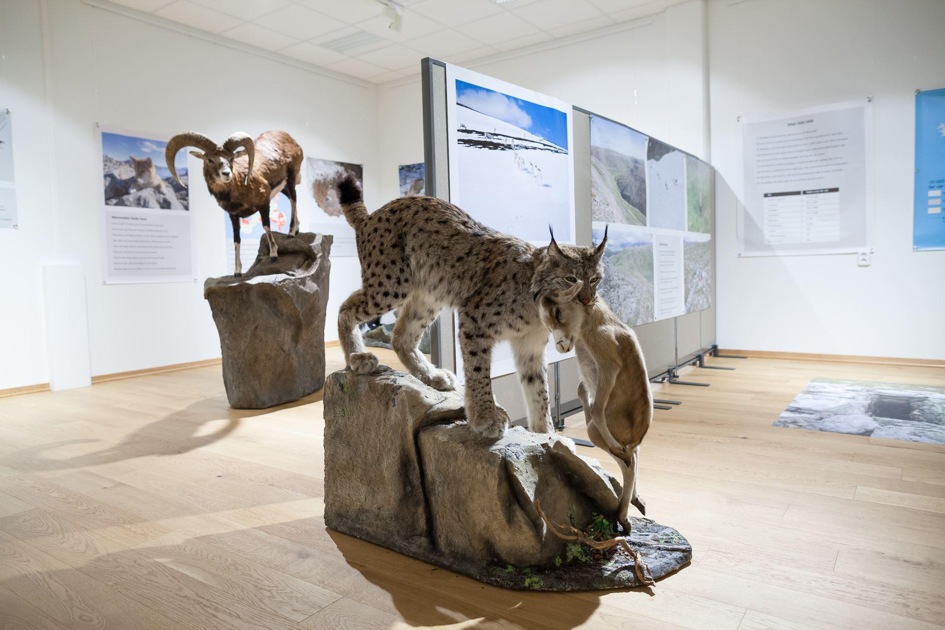 Sortland Museum - Museum Nord