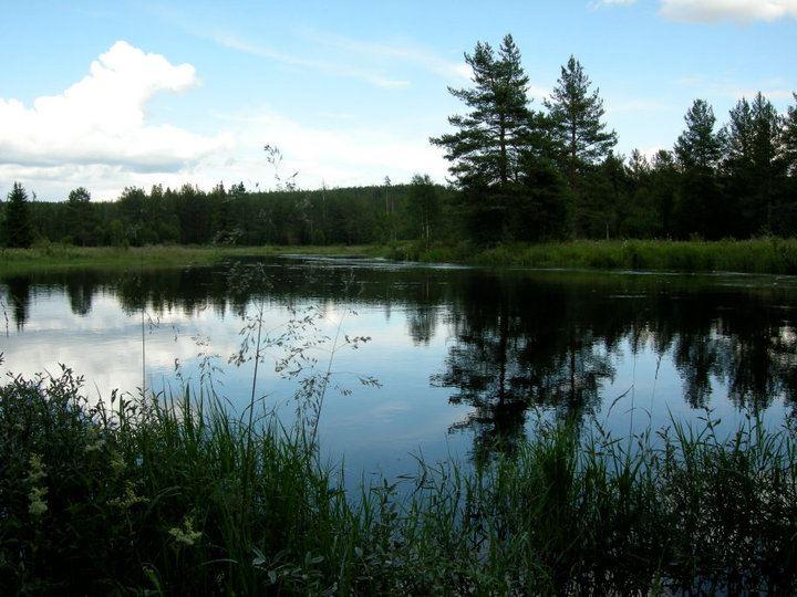 Dalälvens Fiskevårdsområde