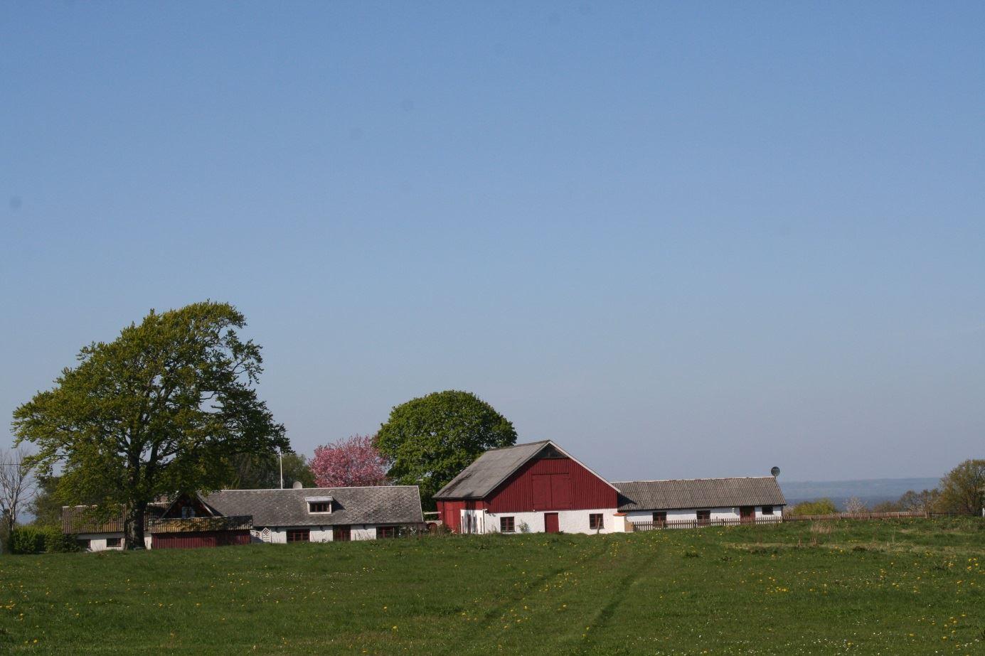 Röddehof