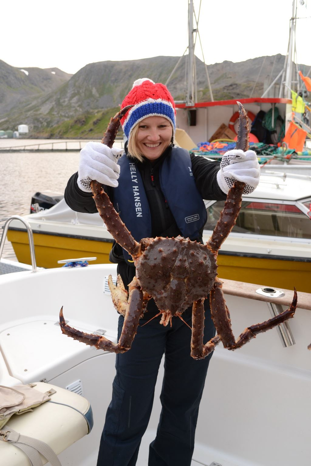 King Crab Photo Safari