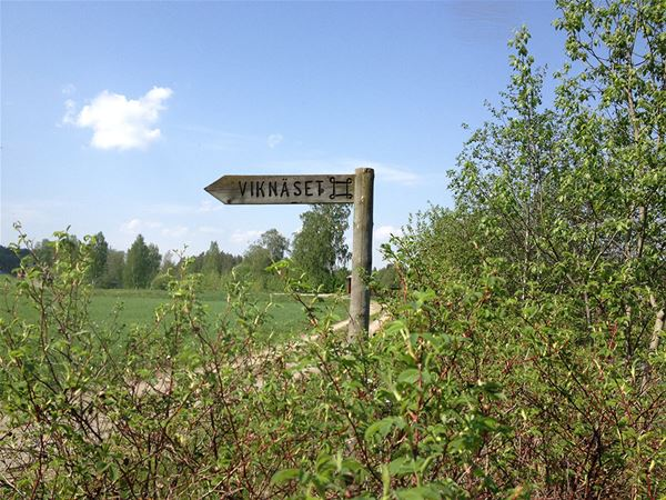 Viknäset - gravfält