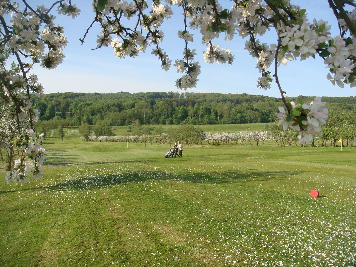 Äppelgården Golf club