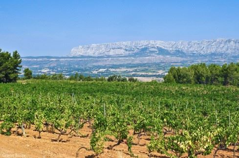 Full day wine tour around Aix en Provence