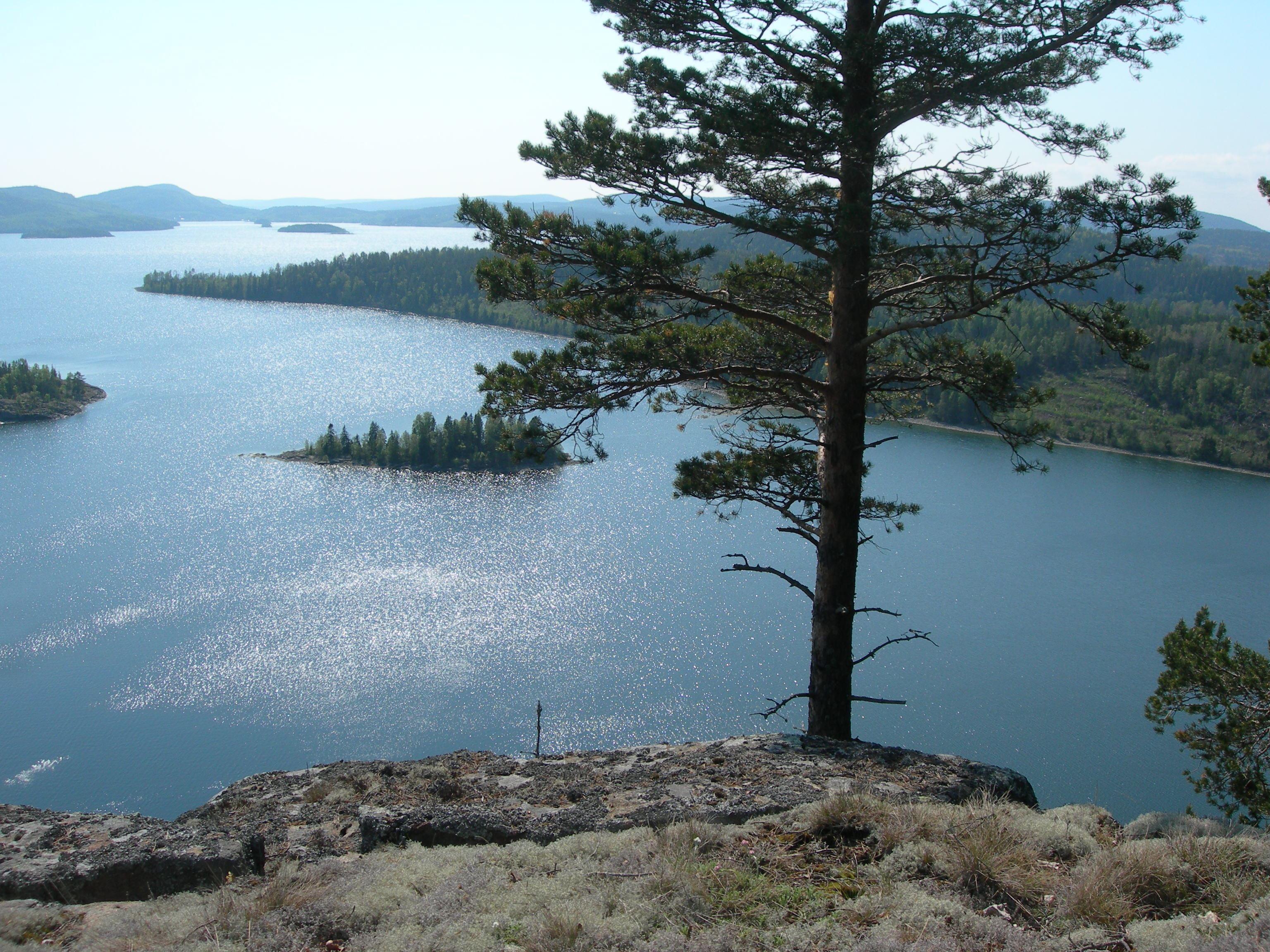 Det bästa av Höga kusten - Att vandra i ett magiskt landskap