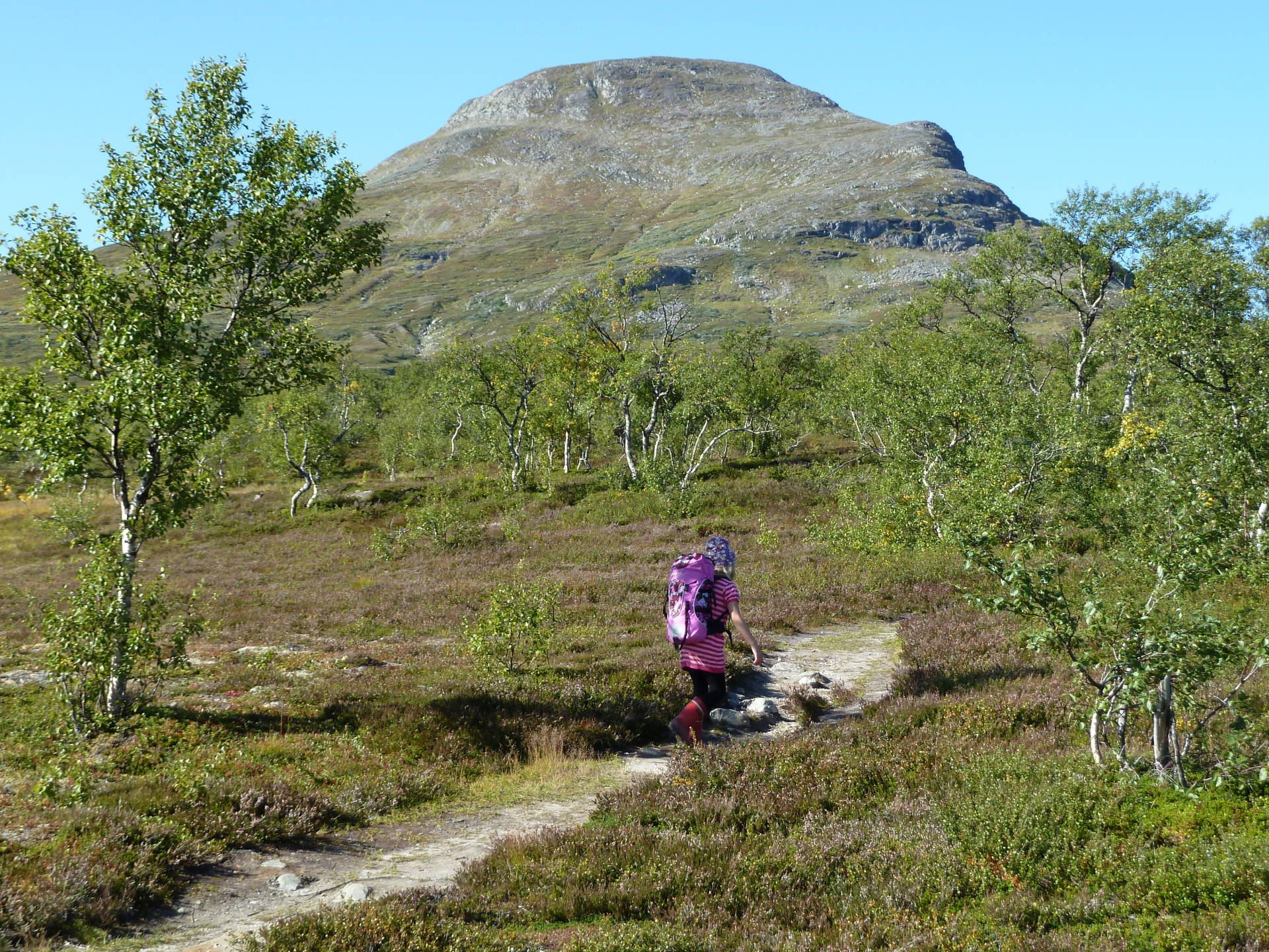 Guided mountain tours Årefjällen