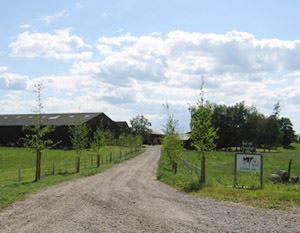 Björkänga gård