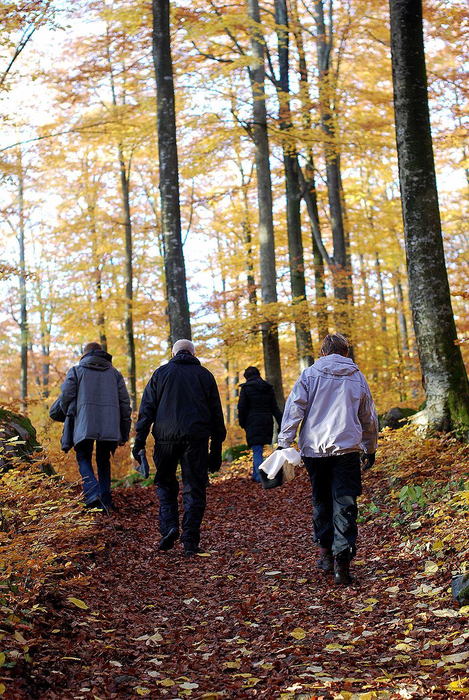 Fotograf: Kristianstads kommun/Cecilia Paulstrup, Balsberget og Balsbergsgrotten