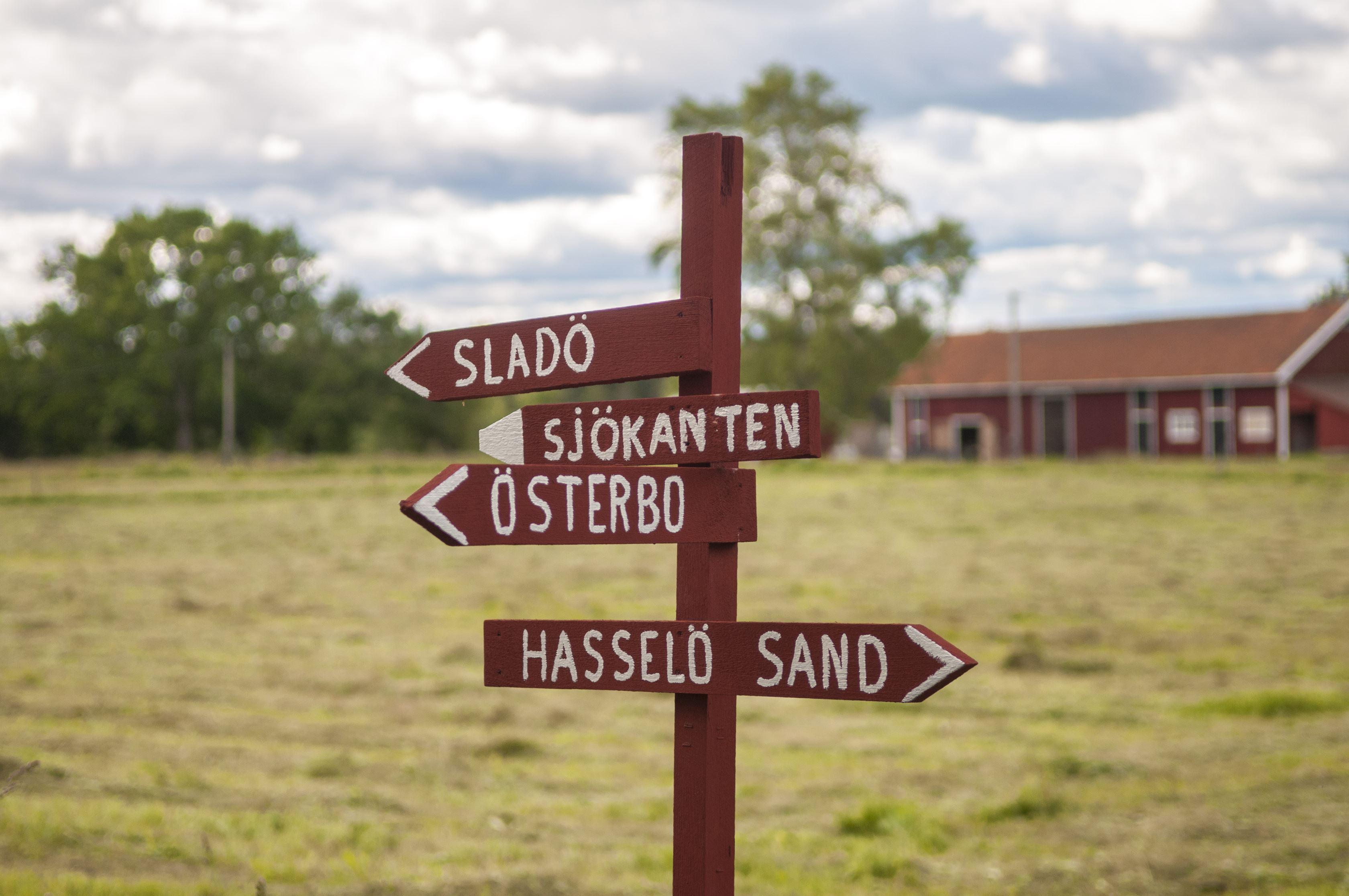 Fredagsutflykt till Hasselö (året runt)