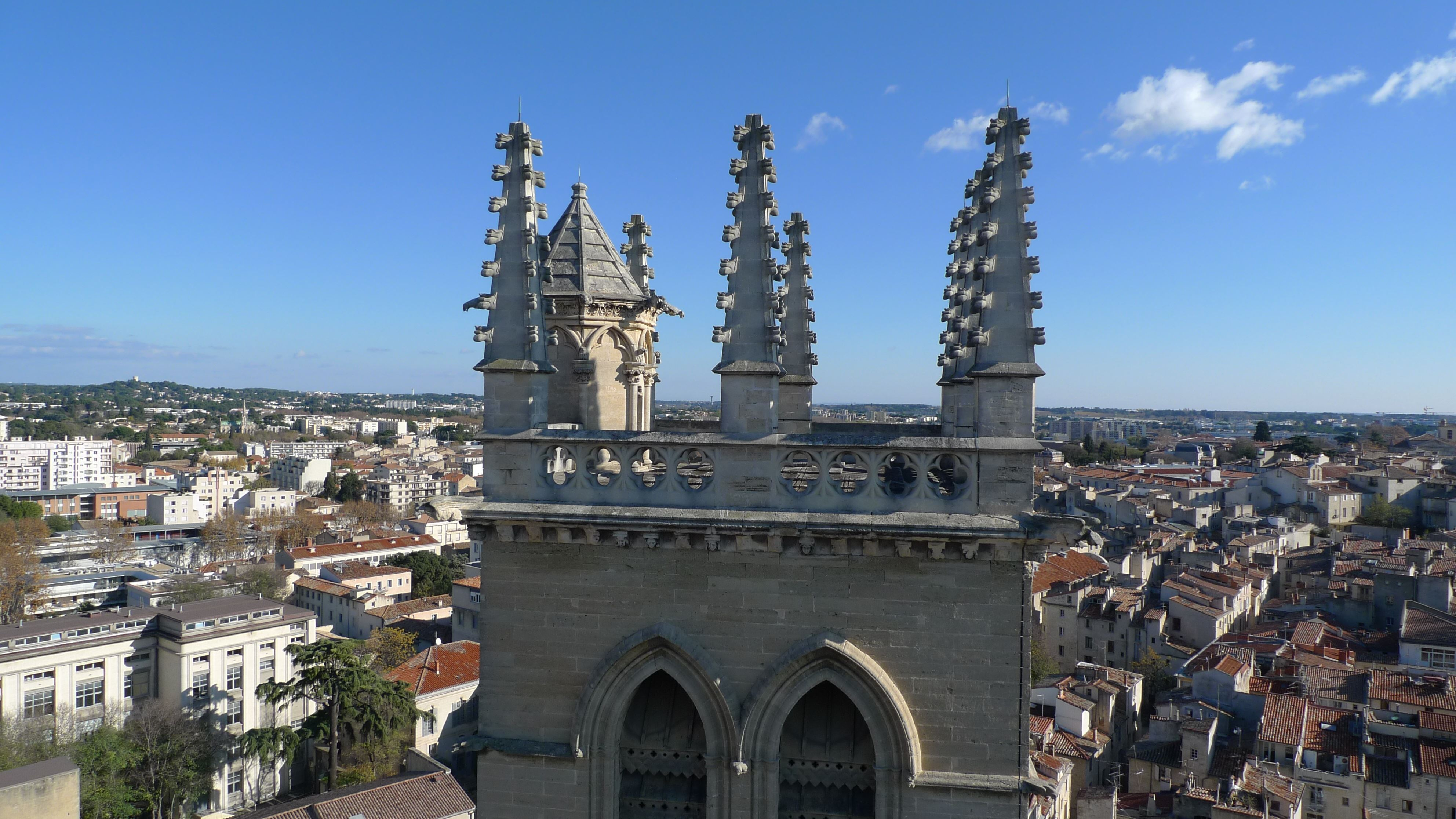 "French guided tour: ""Cathedrale St Pierre"""