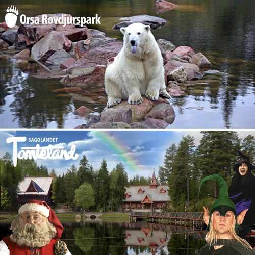 Entrance ticket: Two in one: Orsa Predator Park and Santaworld 25/6-14/8