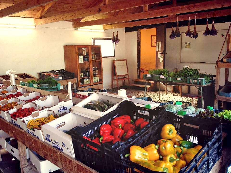 Kåsebergaodlingen Bär- & Grönsaksshop