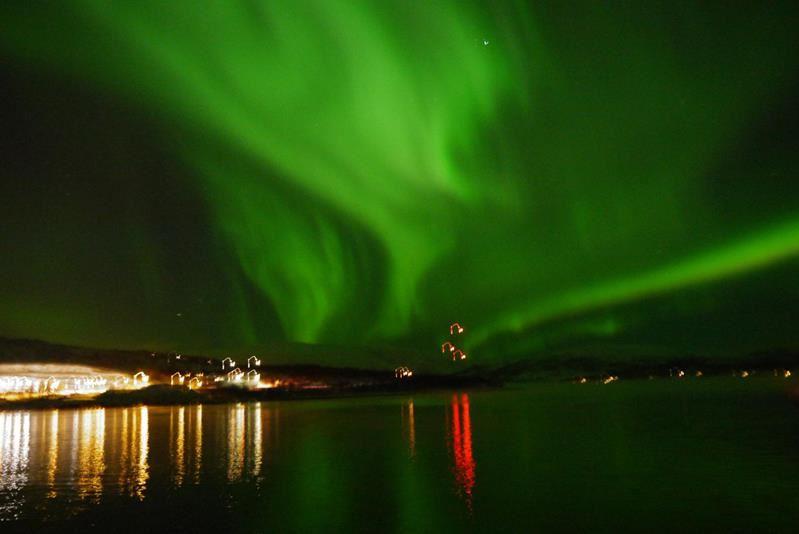© Sørøya Havcruise, MB Havcruise (12 pers.)