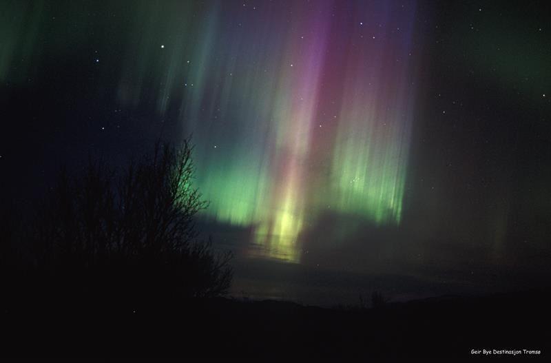 © Visit Tromsø-region, Samische Kultur und Rentierschlittenfahrt unter dem Nordlicht - Camp Tamok