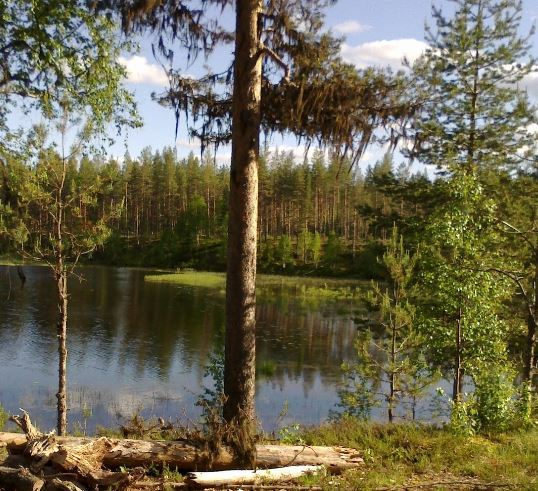 Gäddfiske - En fiskeupplevelse i södra Lappland -LOs, Vildmarksfiske