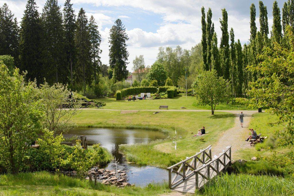 Sävsjös Trädgård