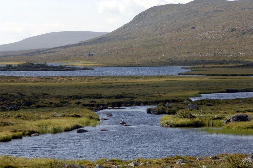 Långfjällets naturreservat