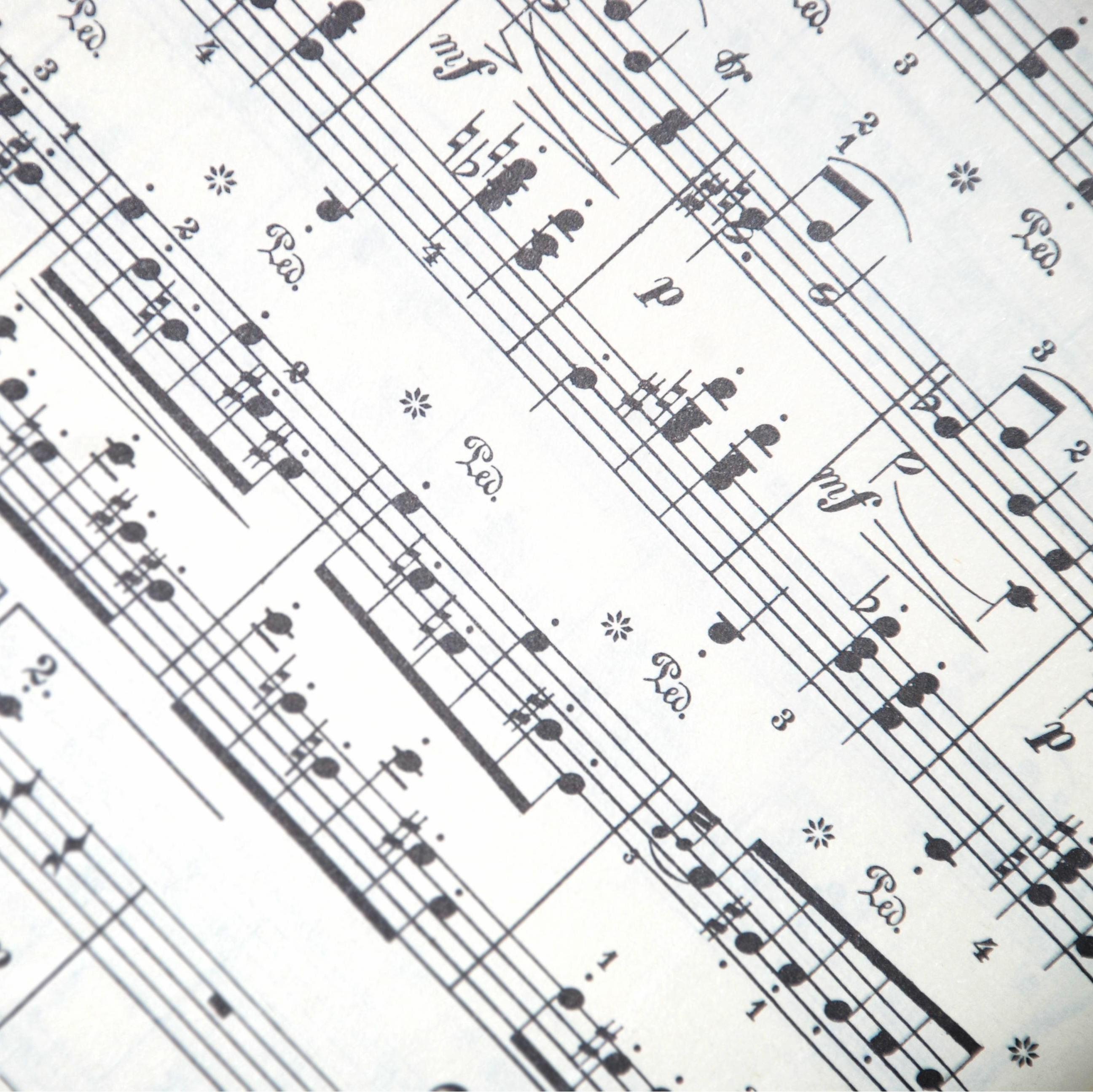 Musik: Wienervals och skeppsskorpor