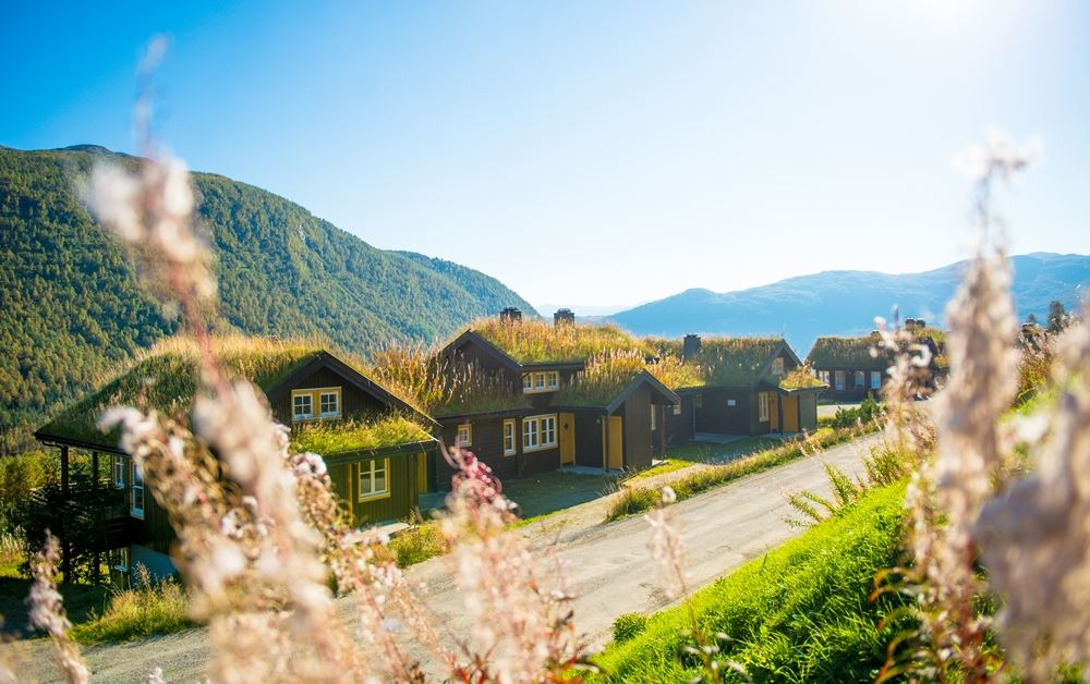 Myrkdalen Mountain Resort - Apartments