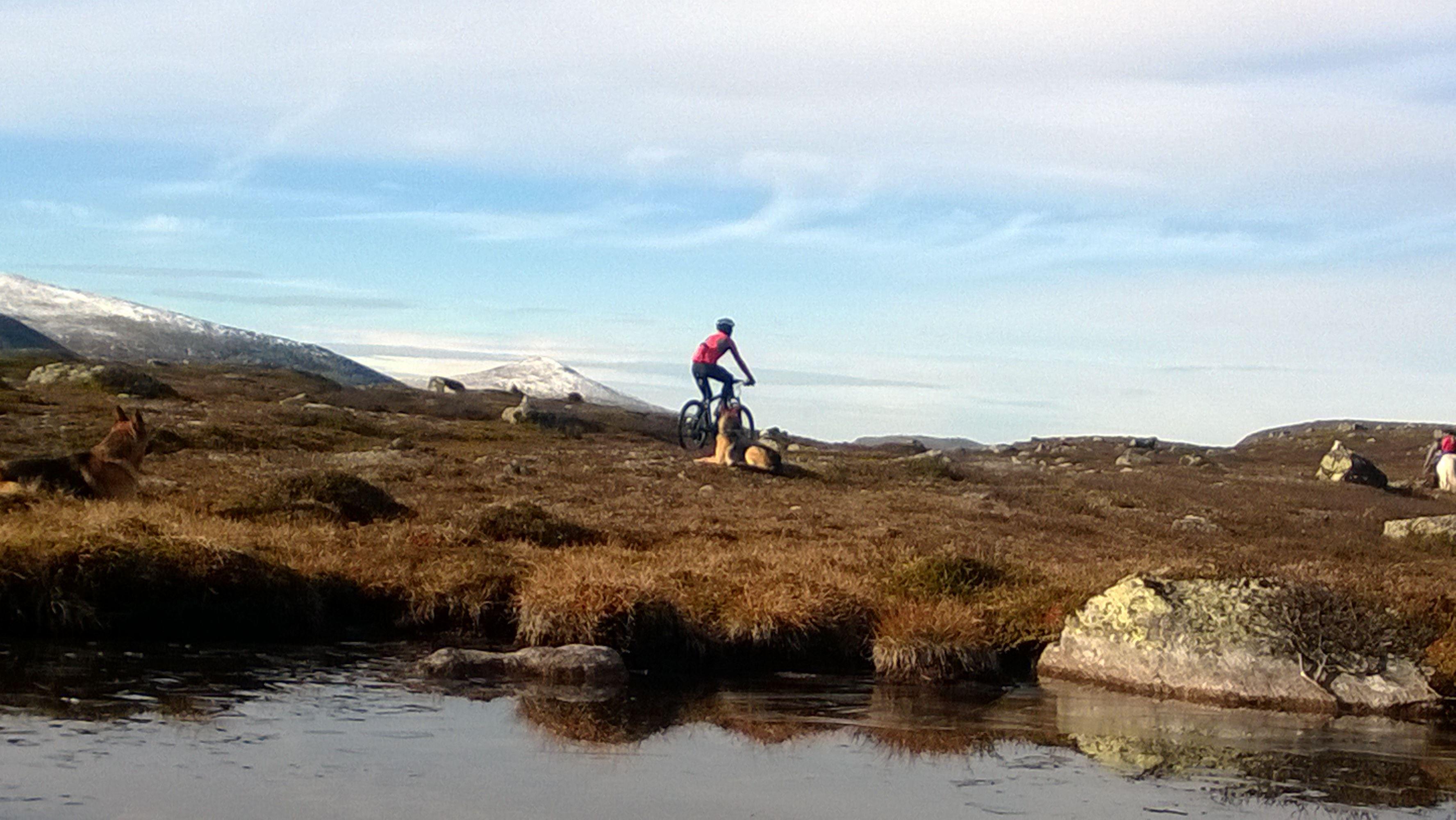 Cykelguide på Fatbike och Mountainbike