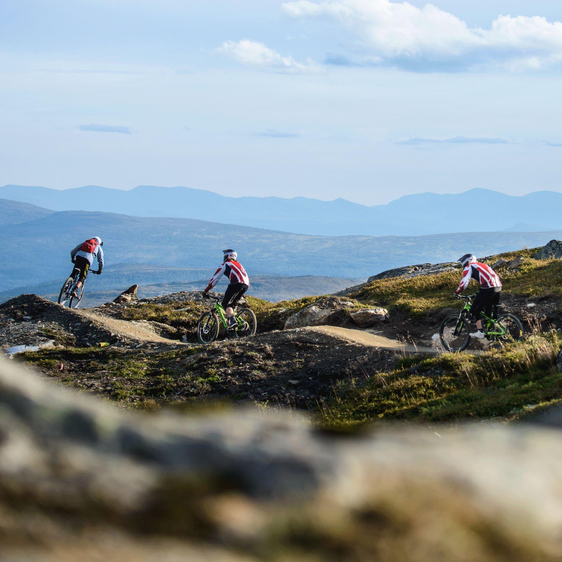 Kurser i Downhill