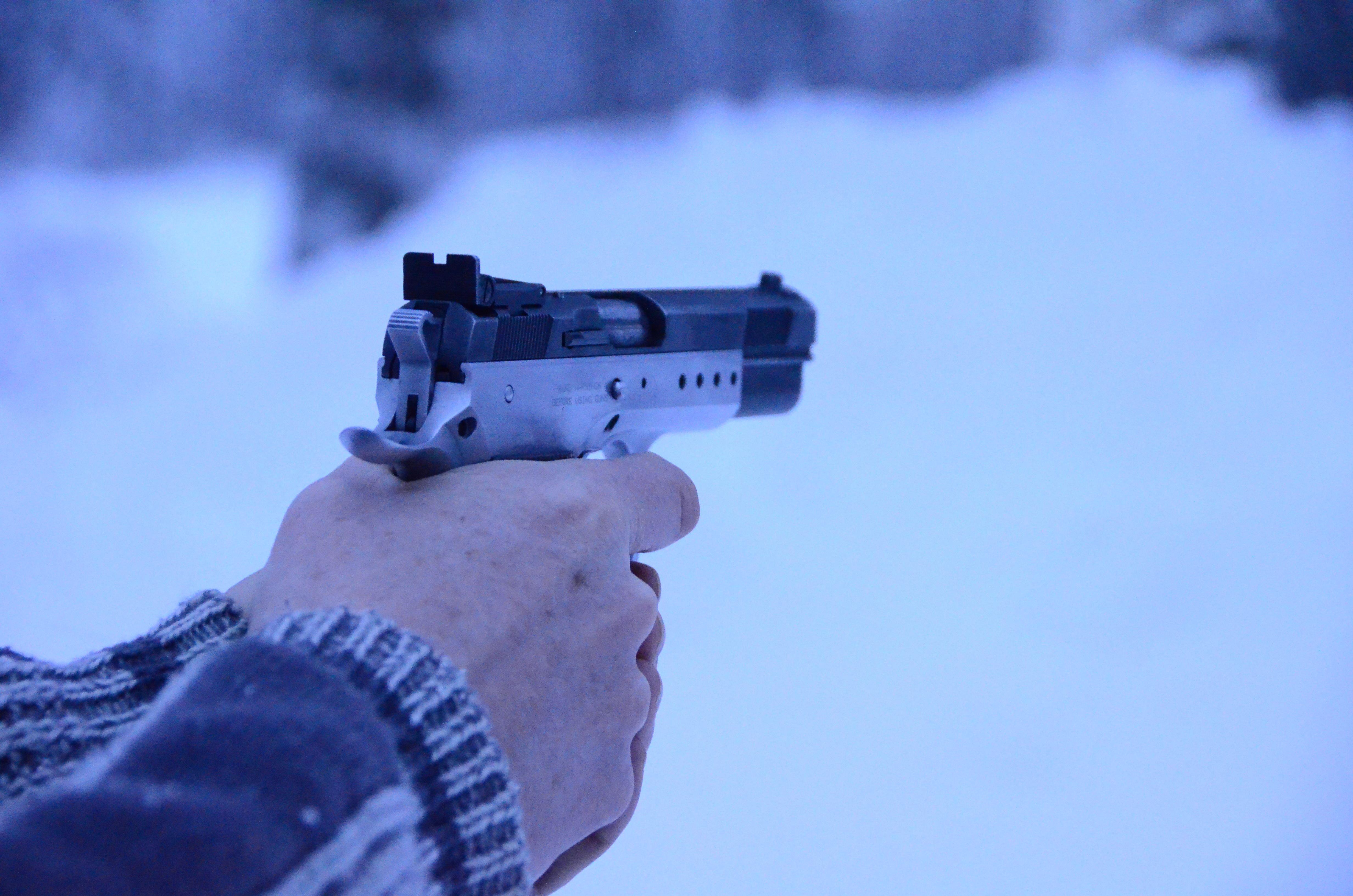 Pistolskytte i Hälsingland