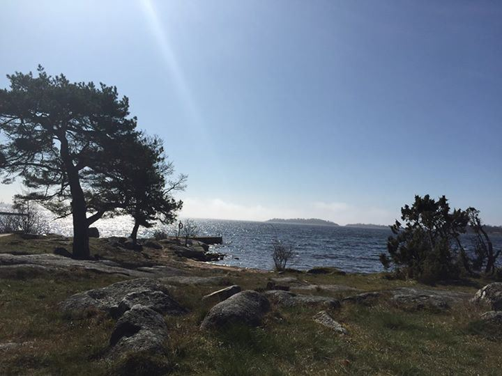 Badplats - Tallholmen