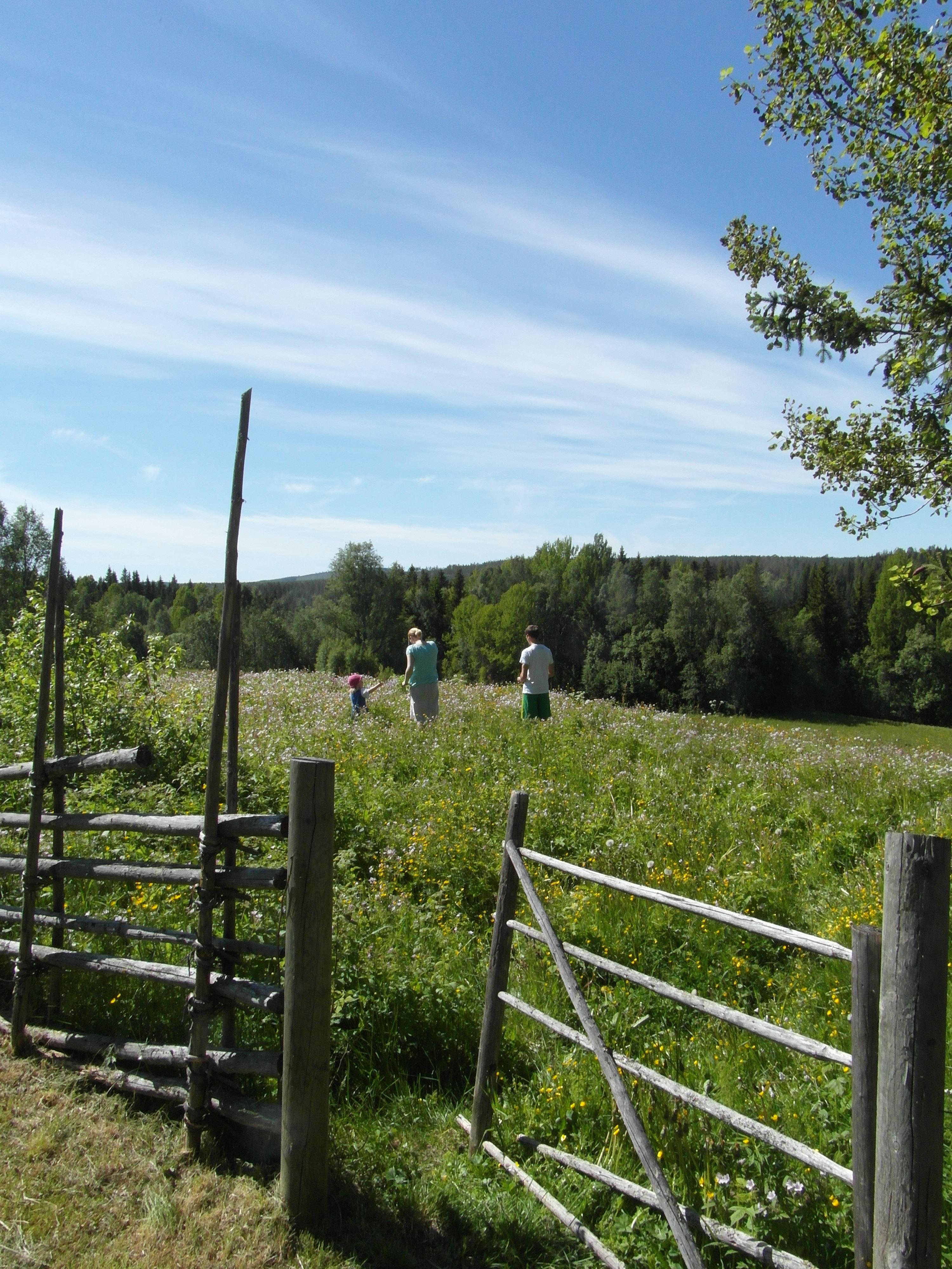 Hembygdsturen Backfors gård